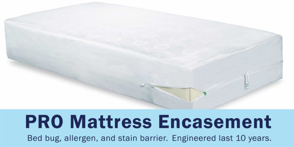 Cleanbrands explains how to choose bed bug blocking mattress encasements