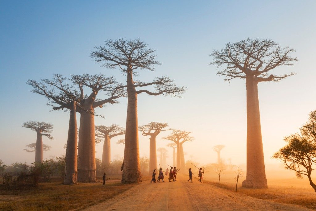 Radisson expands in Africa with 3 hotel signings in Madagascar [Construction Report]