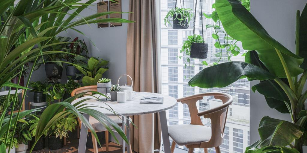 The Joy of Plants takes over in London's Leman Locke hotel